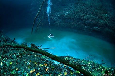 CenoteAngelita03